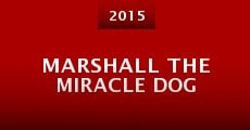 Marshall the Miracle Dog (2014)