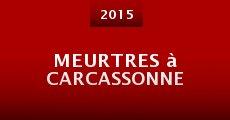 Meurtres à Carcassonne (2015) stream