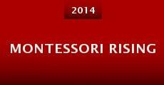 Montessori Rising