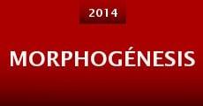 Morphogénesis (2014) stream