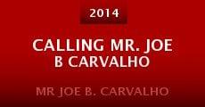 Ver película Mr Joe B. Carvalho
