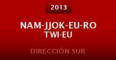 Nam-jjok-eu-ro twi-eu (2013) stream