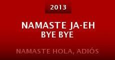 Namaste ja-eh bye bye (2013)