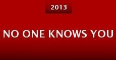 No One Knows You (2013) stream