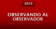 Observando al Observador (2013)
