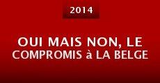 Oui mais non, le compromis à la belge (2014)