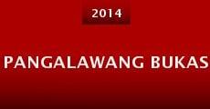 Pangalawang bukas (2014)