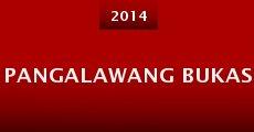 Pangalawang bukas (2014) stream