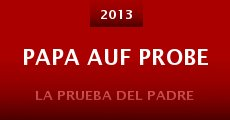 Papa auf Probe (2013)