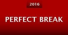 Perfect Break (2015) stream