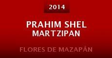Prahim shel Martzipan (2014)