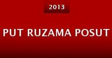 Put Ruzama Posut (2013)