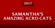 Película Samantha's Amazing Acro-Cats