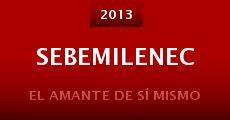 Sebemilenec (2013)