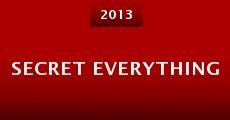 Secret Everything (2013) stream