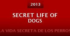 Secret Life of Dogs (2013) stream