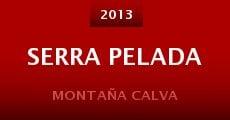 Serra Pelada (2013)