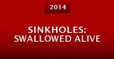 Sinkholes: Swallowed Alive (2014) stream