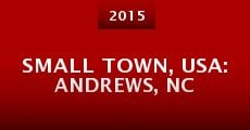 Small Town, USA: Andrews, NC (2014) stream
