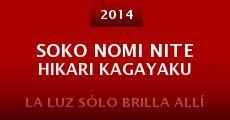 Soko nomi nite hikari kagayaku (2014)