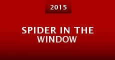 Película Spider in the Window