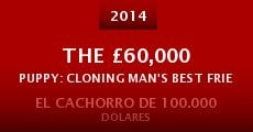 Película The £60,000 Puppy: Cloning Man's Best Friend