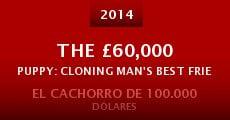 The £60,000 Puppy: Cloning Man's Best Friend (2014) stream