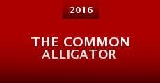 Película The Common Alligator