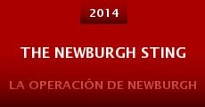 Película The Newburgh Sting