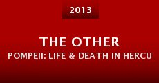 The Other Pompeii: Life & Death in Herculaneum (2013)