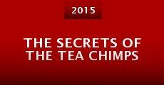 Película The Secrets of the Tea Chimps