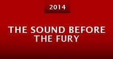 The Sound Before the Fury (2014)