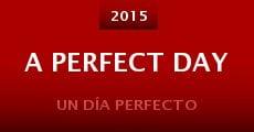 Ver película Un día perfecto