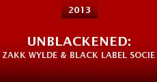Unblackened: Zakk Wylde & Black Label Society Live (2013) stream