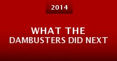 What the Dambusters Did Next