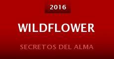 Película Wildflower