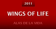 Película Wings of Life